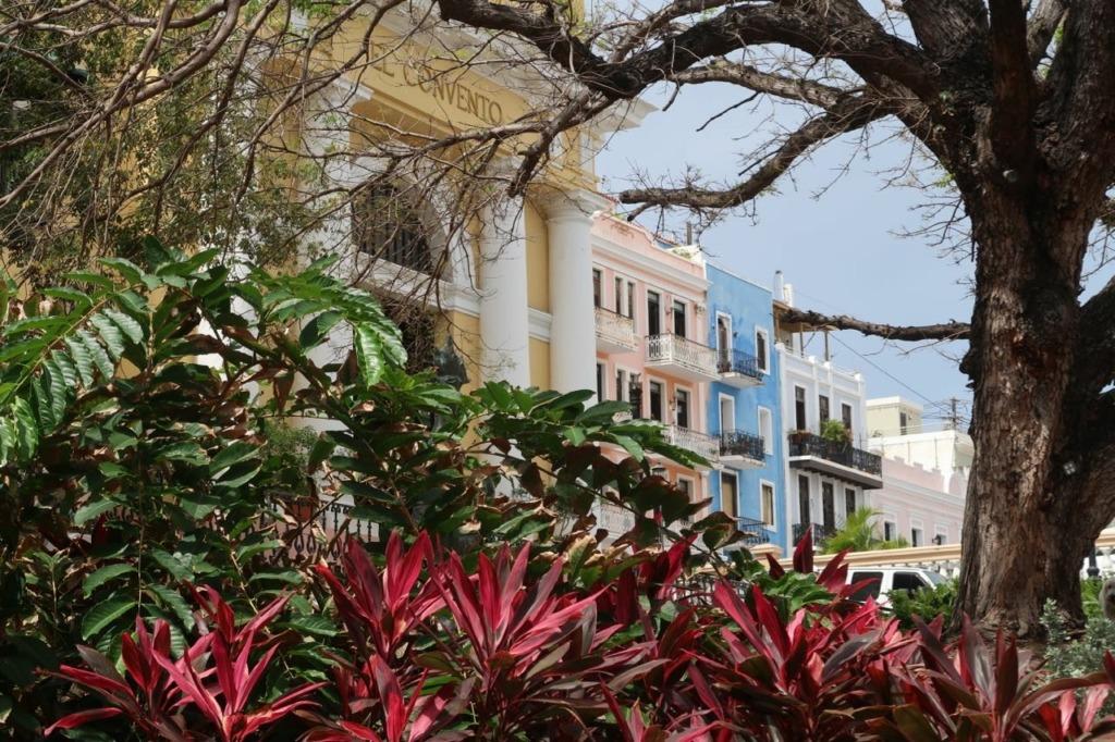 Old San Juan Park View