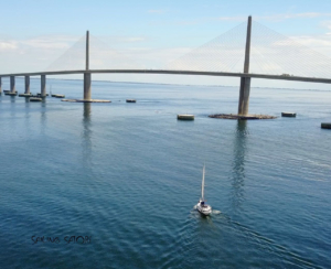 Satori Sailing under Sunshine Skyway Bridge